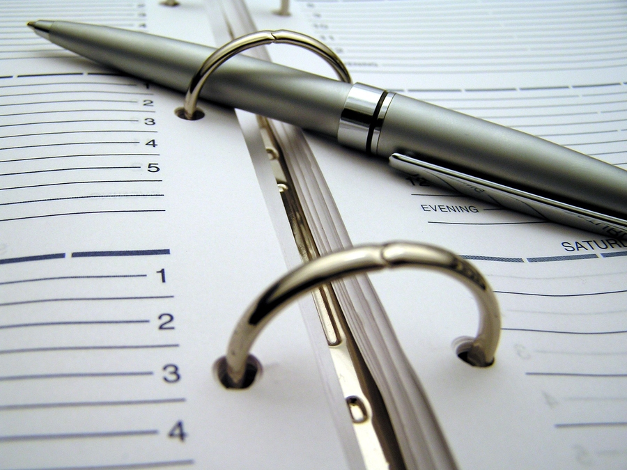 macro (zoomed in closeup photo) of a pen on a daily planner in a 3-ring binder
